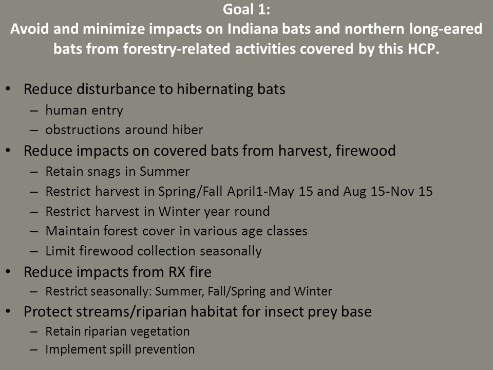 Reduce disturbance to hibernating bats