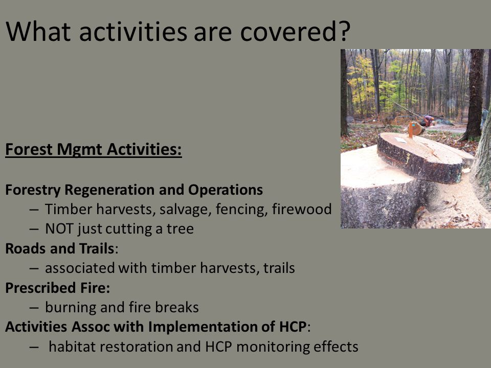 What activities are covered
