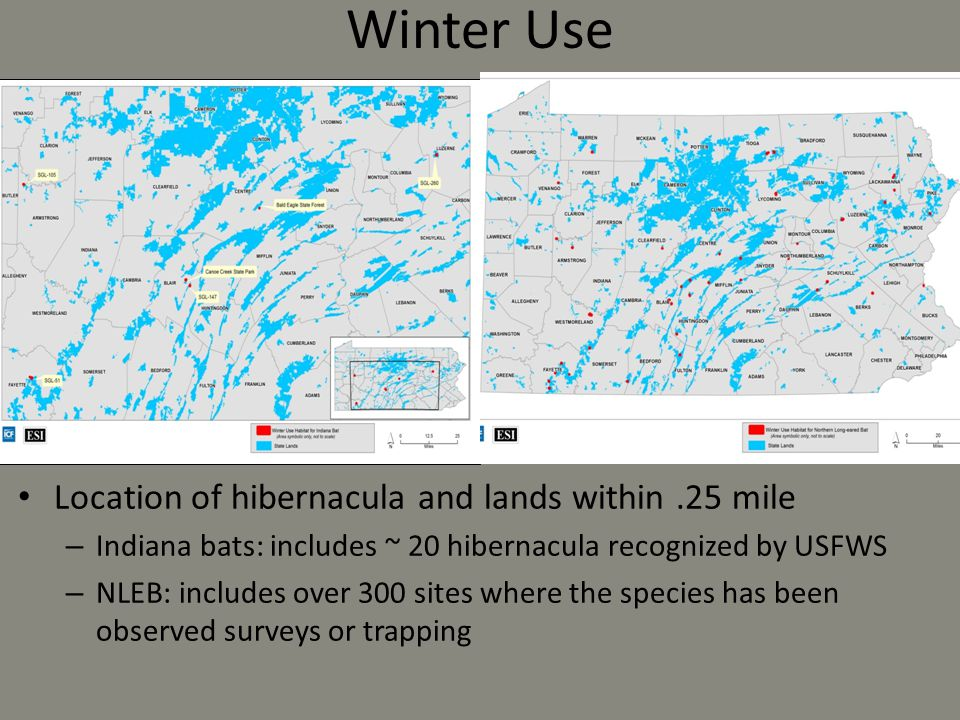 Winter Use Location of hibernacula and lands within .25 mile