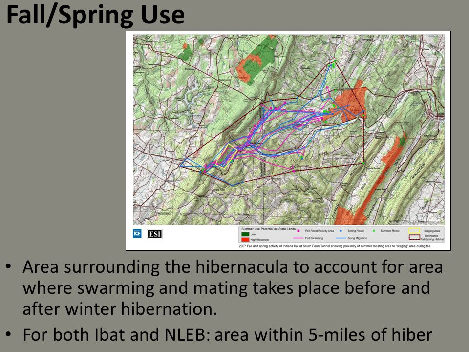 Fall/Spring Use Area surrounding the hibernacula to account for area where swarming and mating takes place before and after winter hibernation.