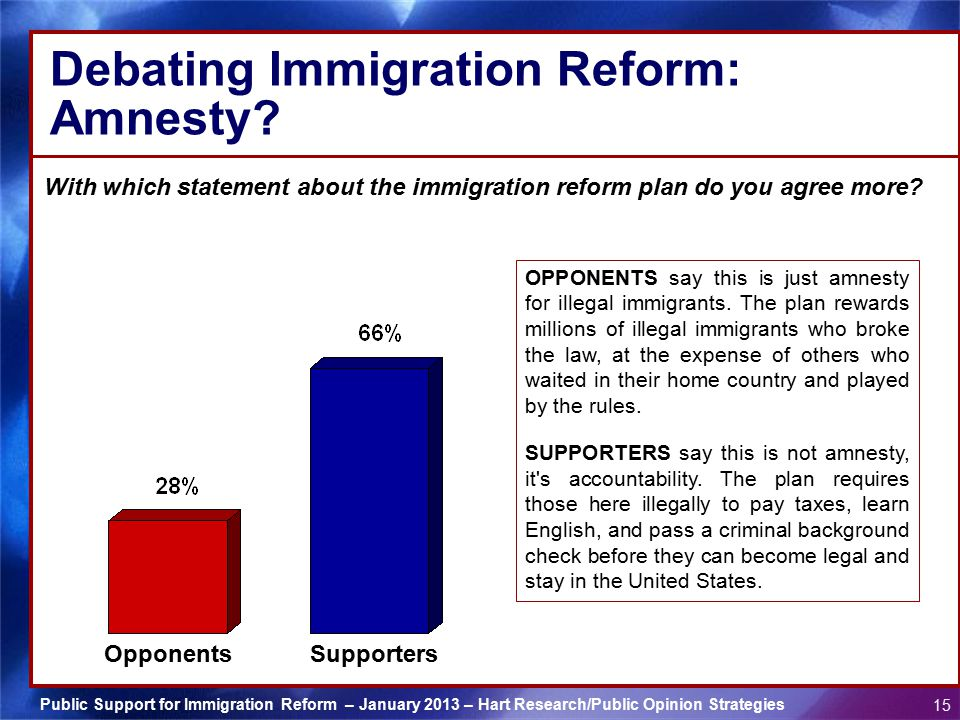 Debating Immigration Reform: Amnesty