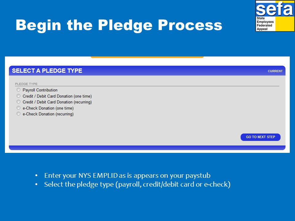 Begin the Pledge Process