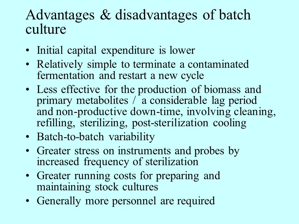Advantages & disadvantages of batch culture