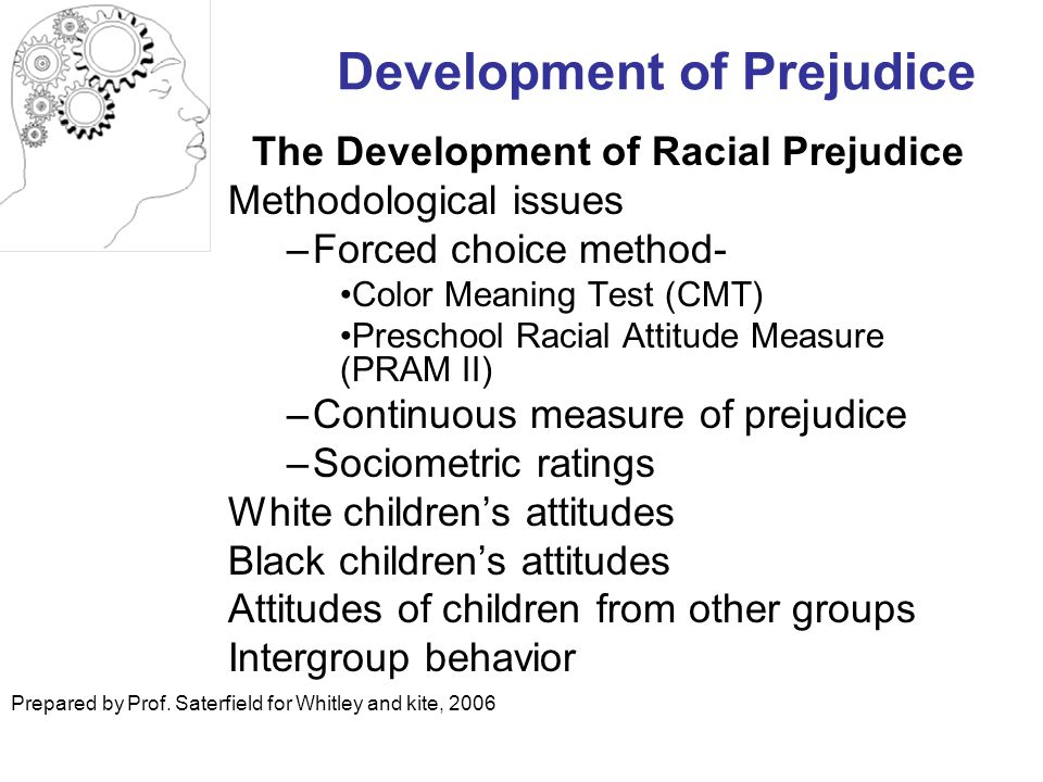Development of Prejudice