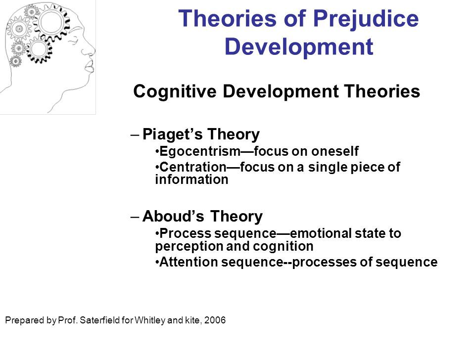 Theories of Prejudice Development
