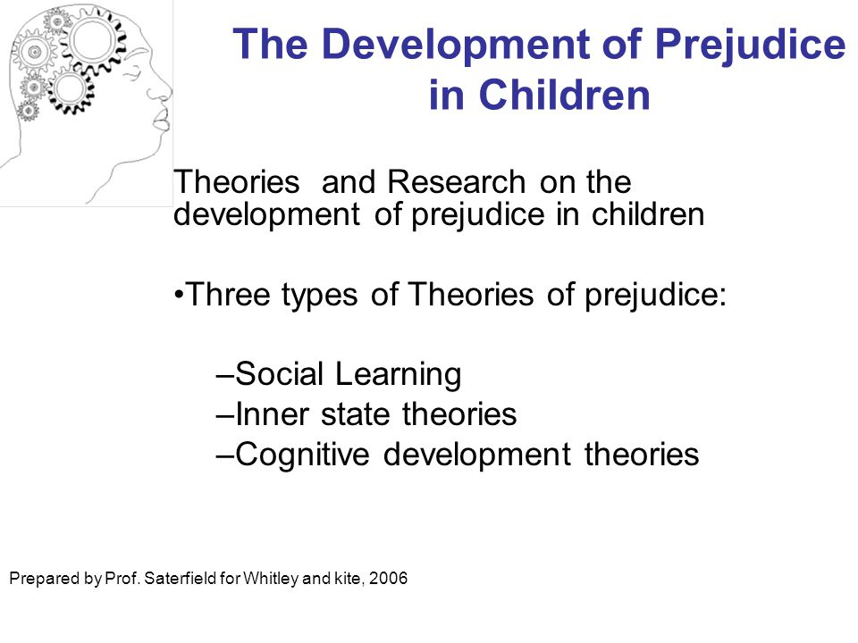 The Development of Prejudice in Children