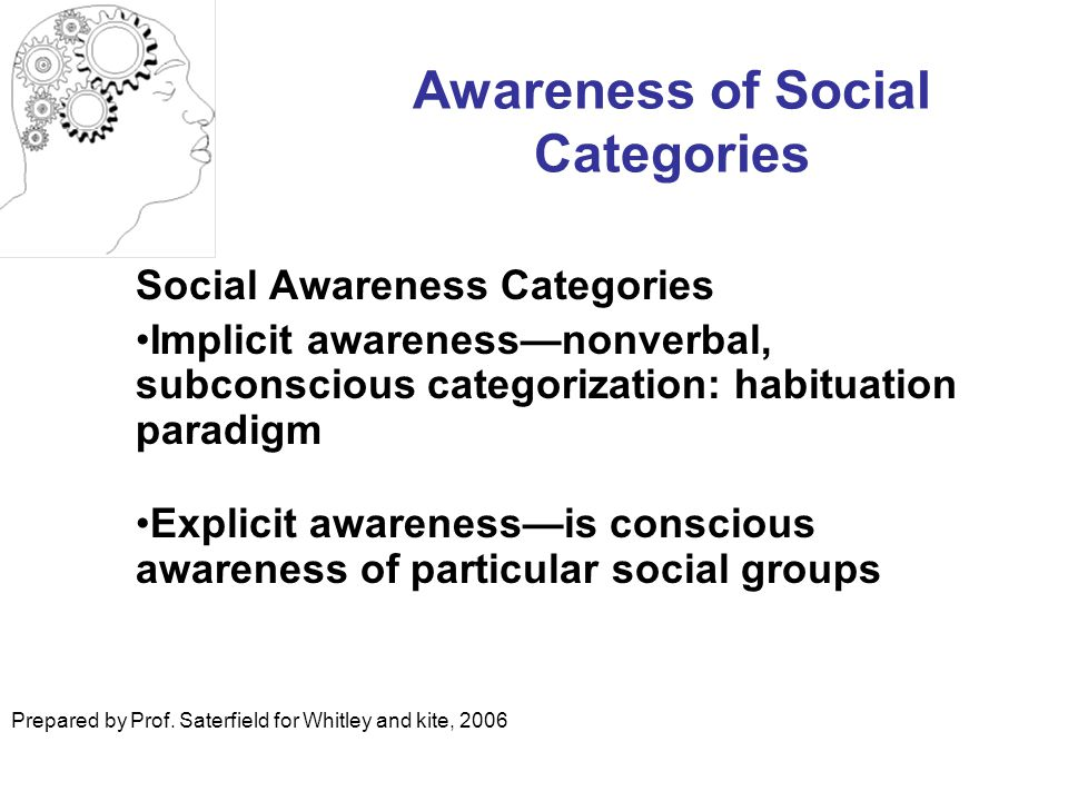 Awareness of Social Categories
