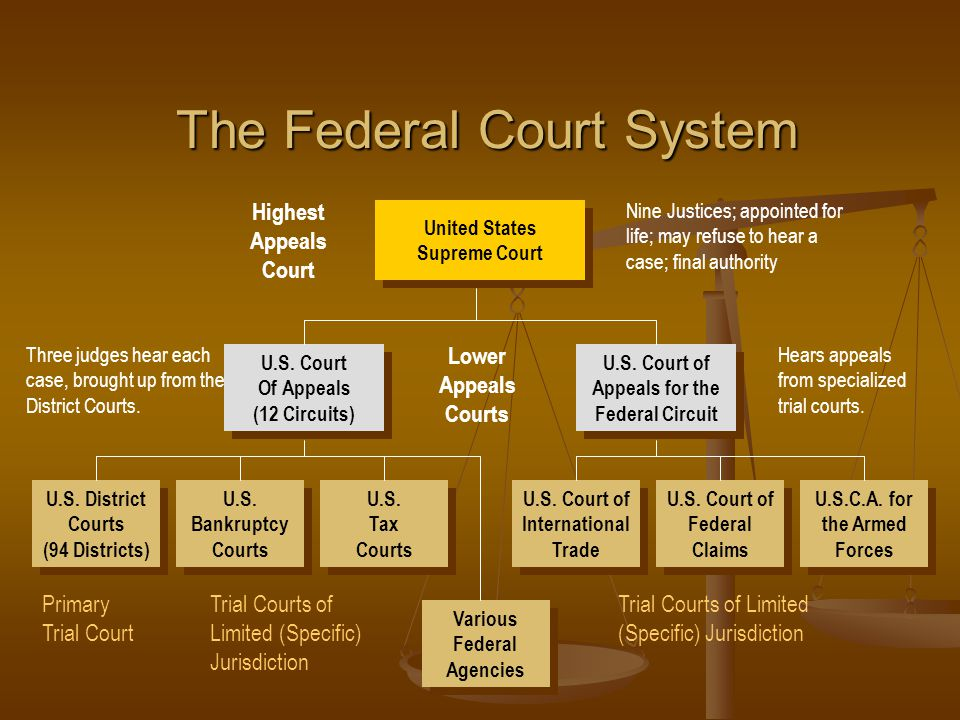 united states court systems