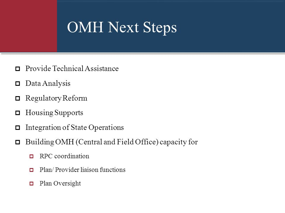 OMH Next Steps Provide Technical Assistance Data Analysis
