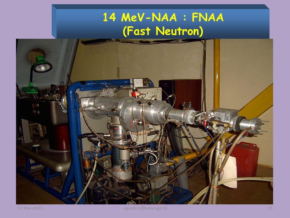 14 MeV-NAA : FNAA (Fast Neutron)