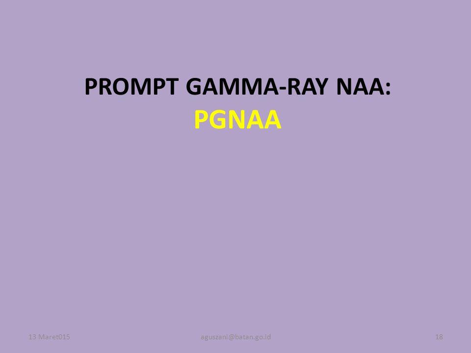 PROMPT GAMMA-RAY NAA: PGNAA
