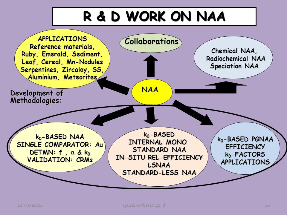 R & D WORK ON NAA Collaborations NAA Development of Methodologies: