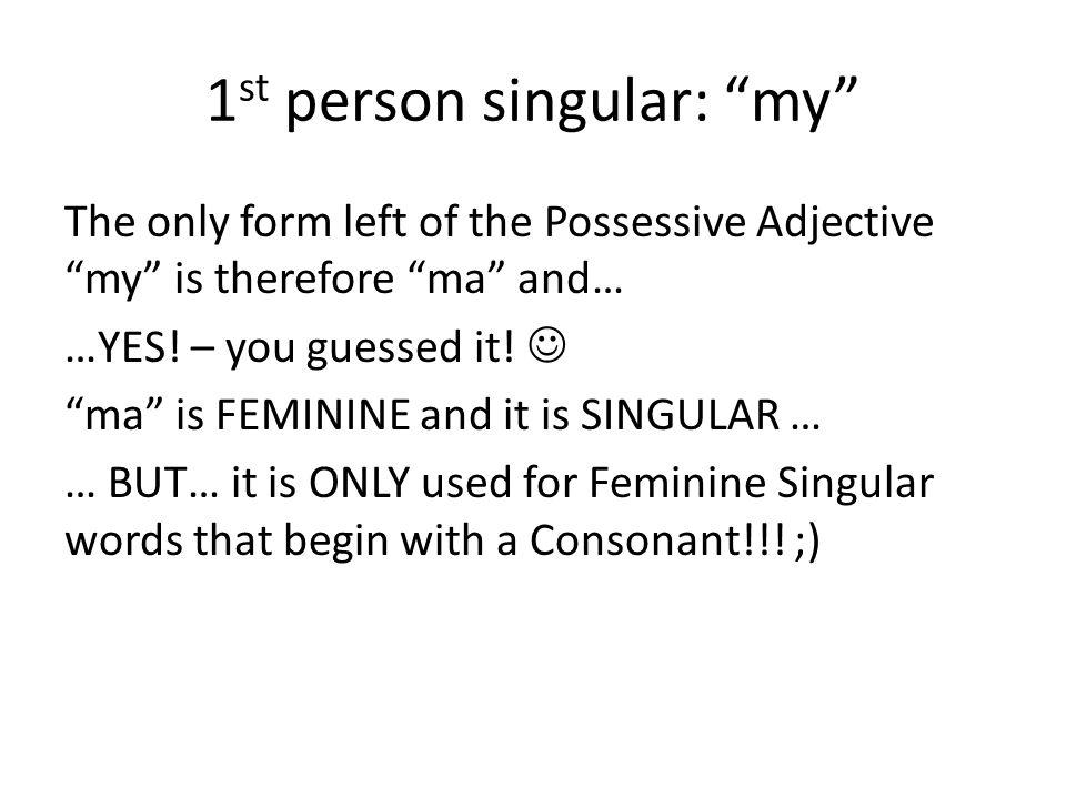 1st person singular: my