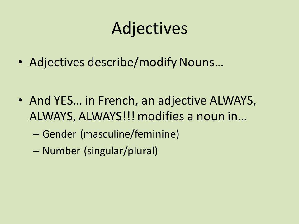 Adjectives Adjectives describe/modify Nouns…