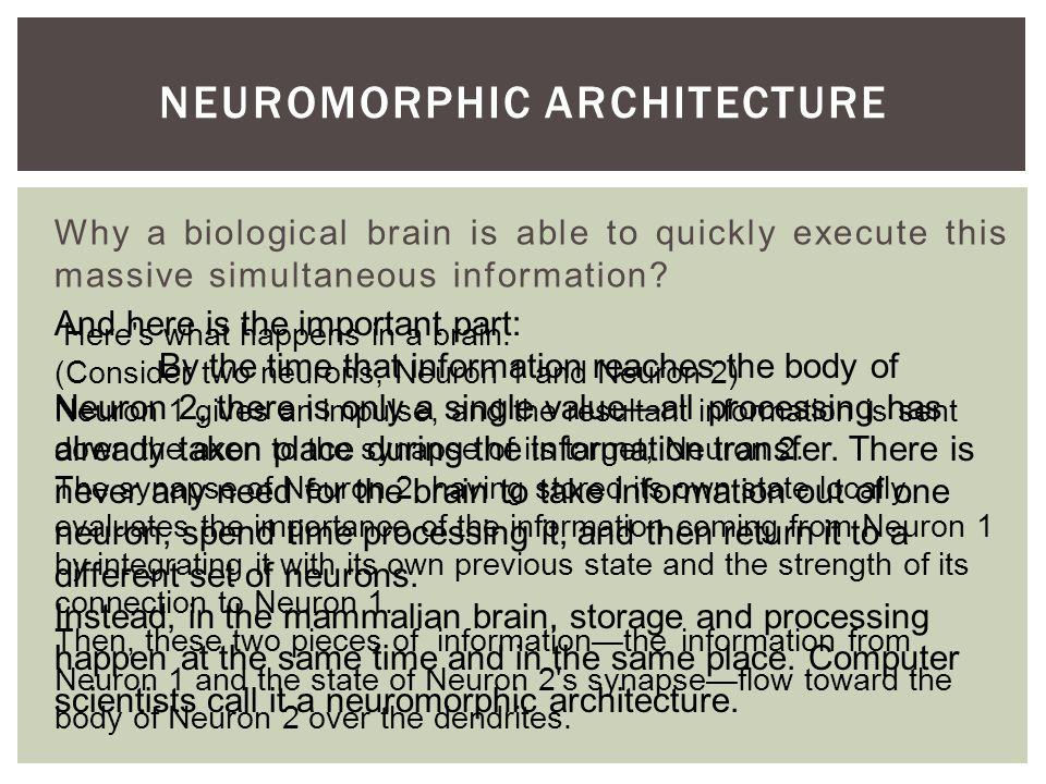 Neuromorphic architecture