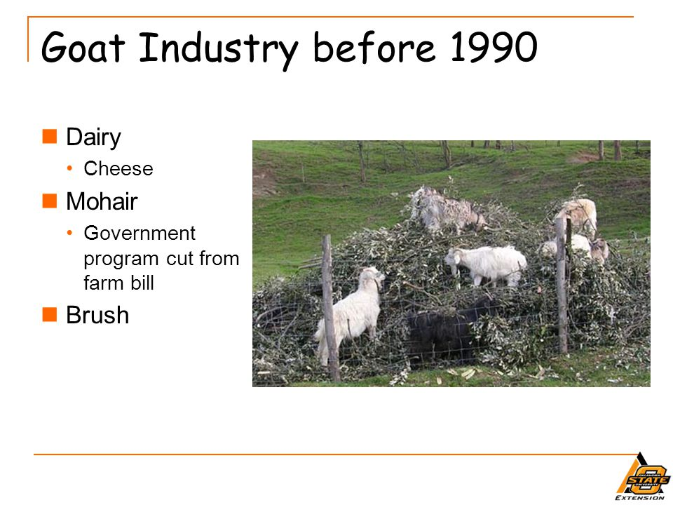 Goat Industry before 1990 Dairy Mohair Brush Cheese