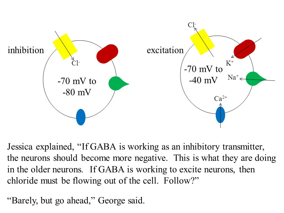 Jessica explained, If GABA is working as an inhibitory transmitter,