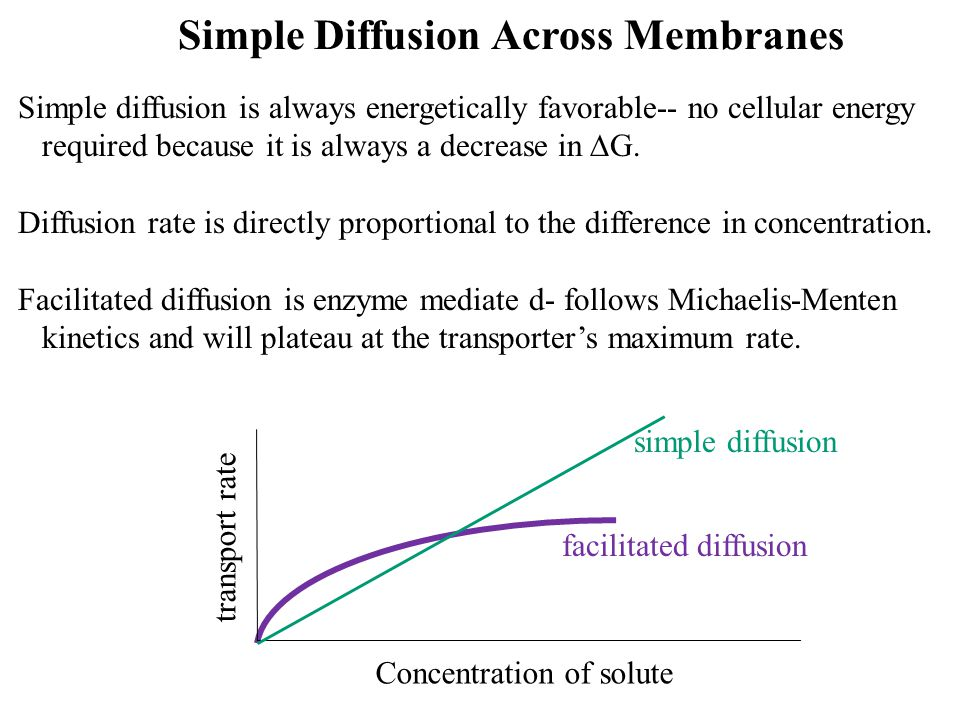 Simple Diffusion Across Membranes
