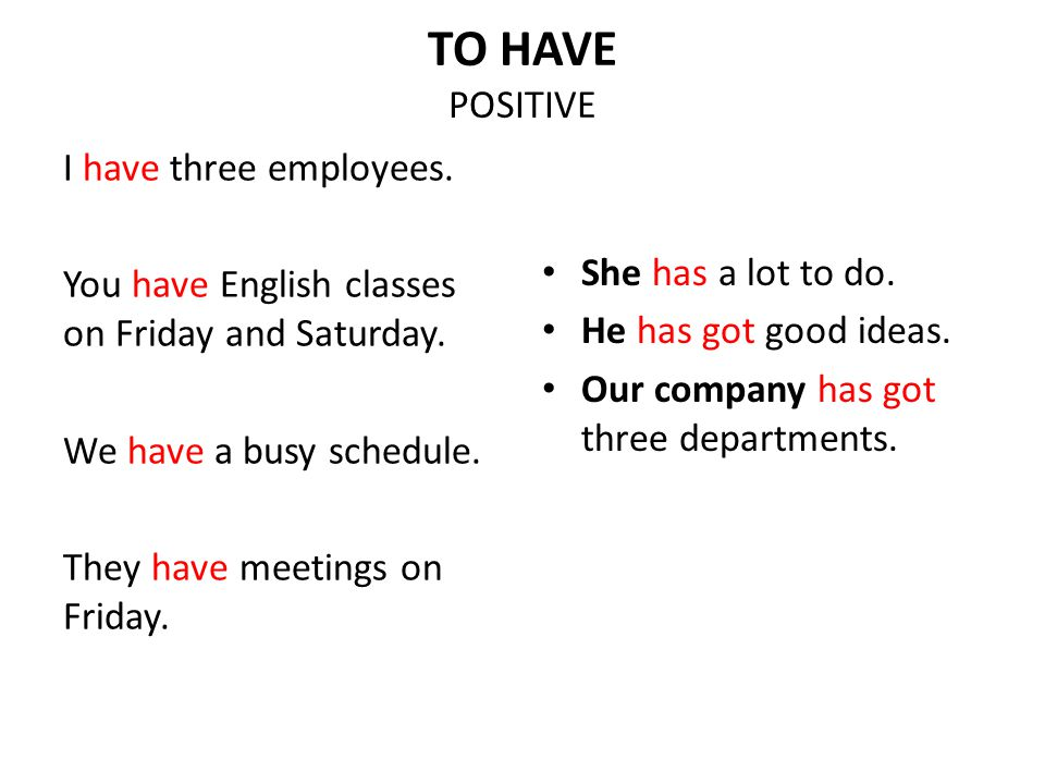 TO HAVE POSITIVE I have three employees. You have English classes on Friday and Saturday. We have a busy schedule. They have meetings on Friday.