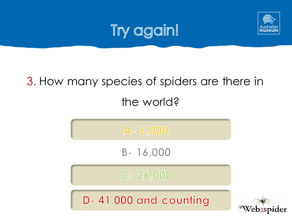 3. How many species of spiders are there in the world