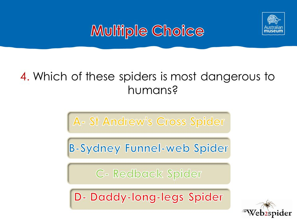 Multiple Choice 4. Which of these spiders is most dangerous to humans