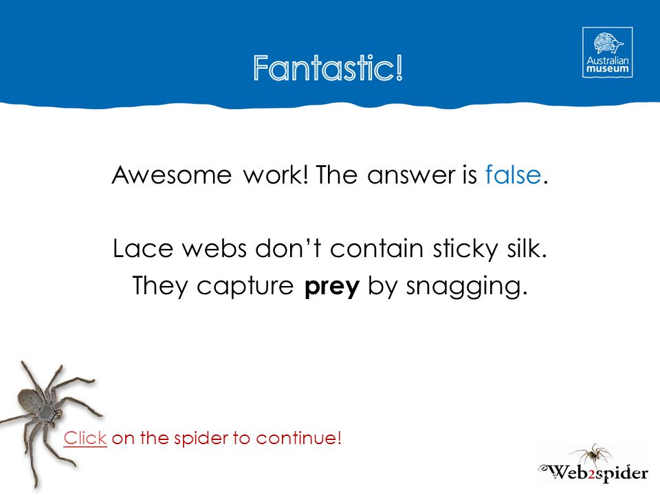Fantastic! Awesome work! The answer is false. Lace webs don't contain sticky silk. They capture prey by snagging.