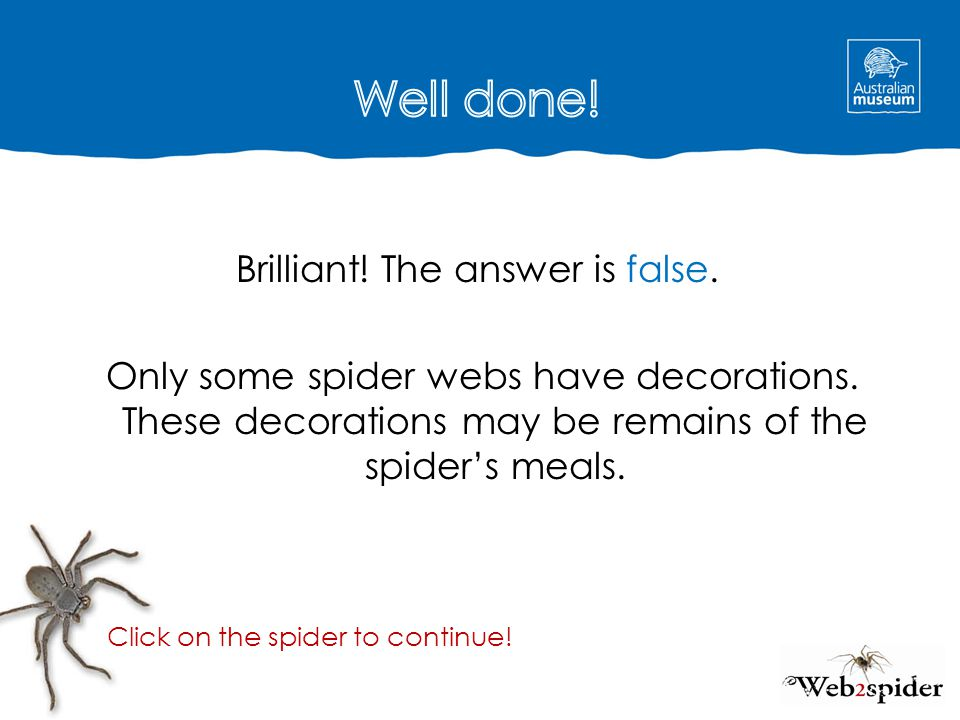 Well done! Brilliant! The answer is false. Only some spider webs have decorations. These decorations may be remains of the spider's meals.