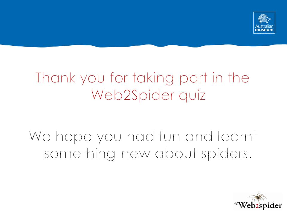Thank you for taking part in the Web2Spider quiz We hope you had fun and learnt something new about spiders.