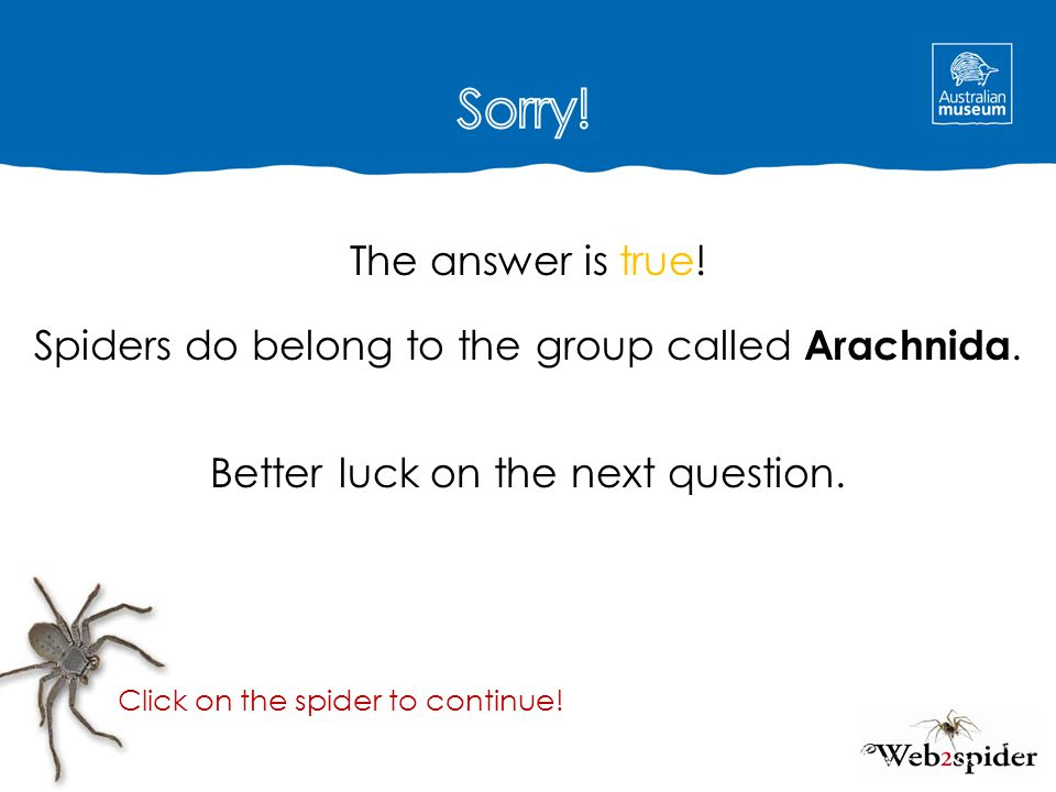 Sorry! The answer is true! Spiders do belong to the group called Arachnida. Better luck on the next question.