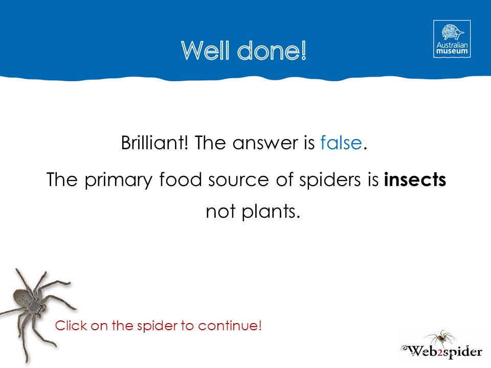 Well done! Brilliant! The answer is false. The primary food source of spiders is insects not plants.