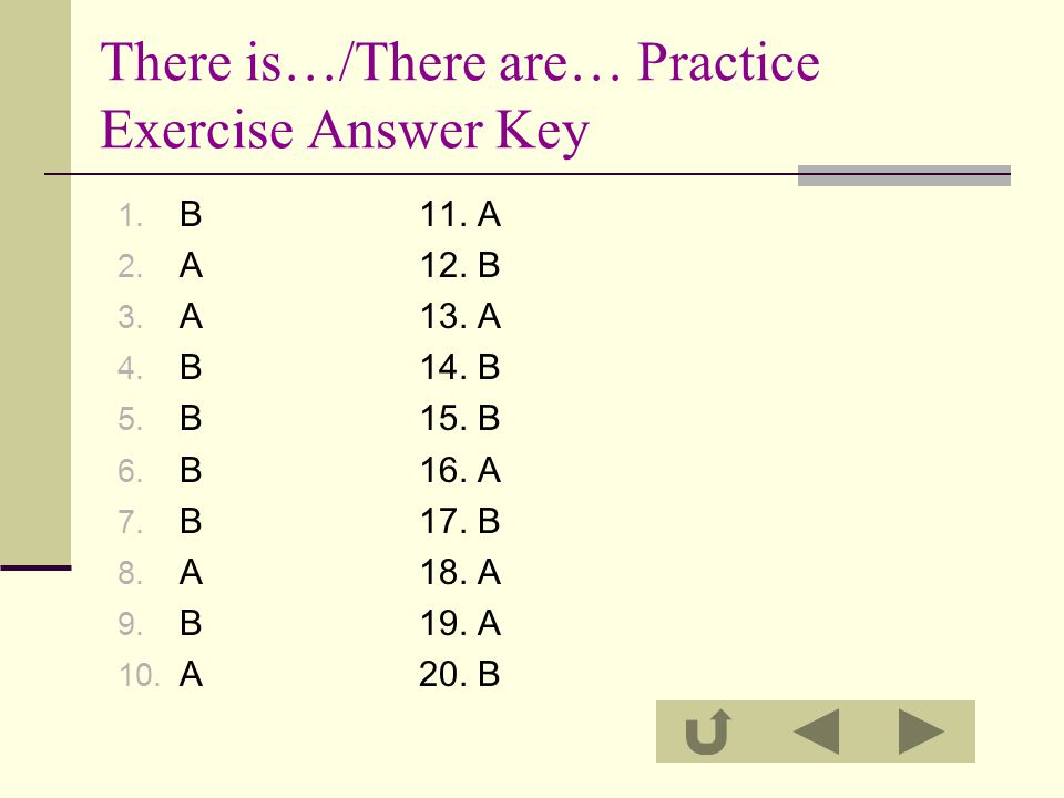 There is…/There are… Practice Exercise Answer Key