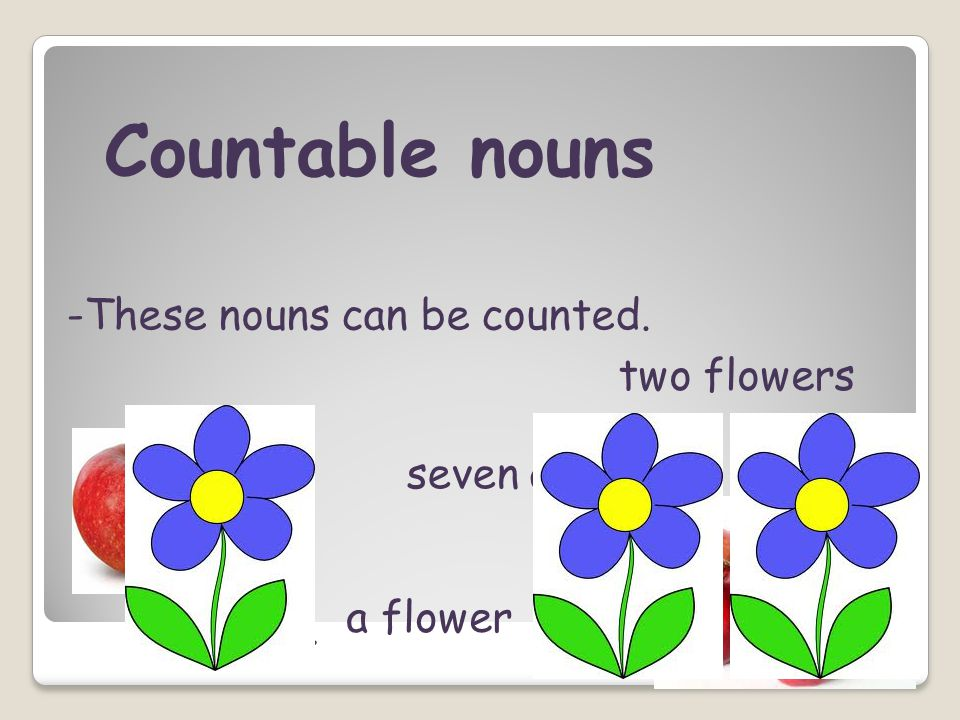 Countable nouns -These nouns can be counted. two flowers seven apples