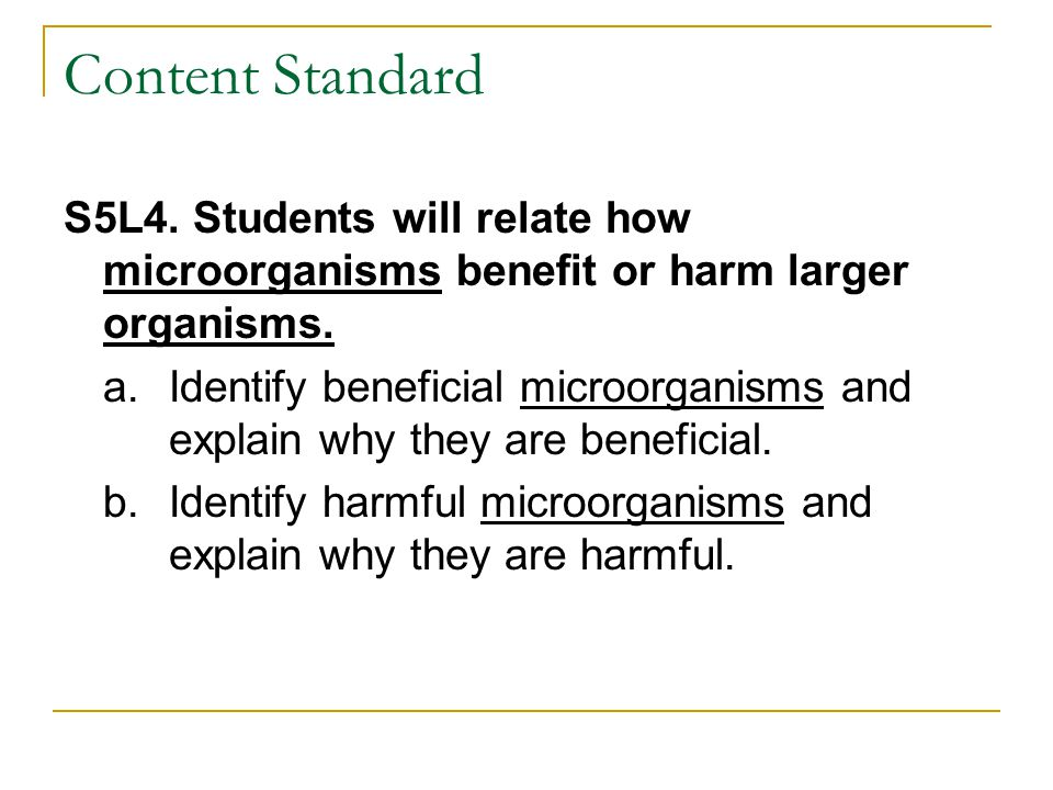 Content Standard S5L4. Students will relate how microorganisms benefit or harm larger organisms.