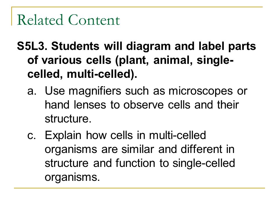 Related Content S5L3. Students will diagram and label parts of various cells (plant, animal, single-celled, multi-celled).