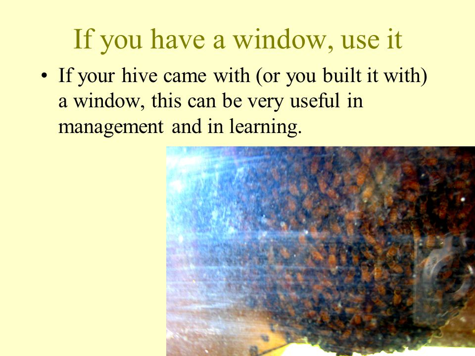 If you have a window, use it