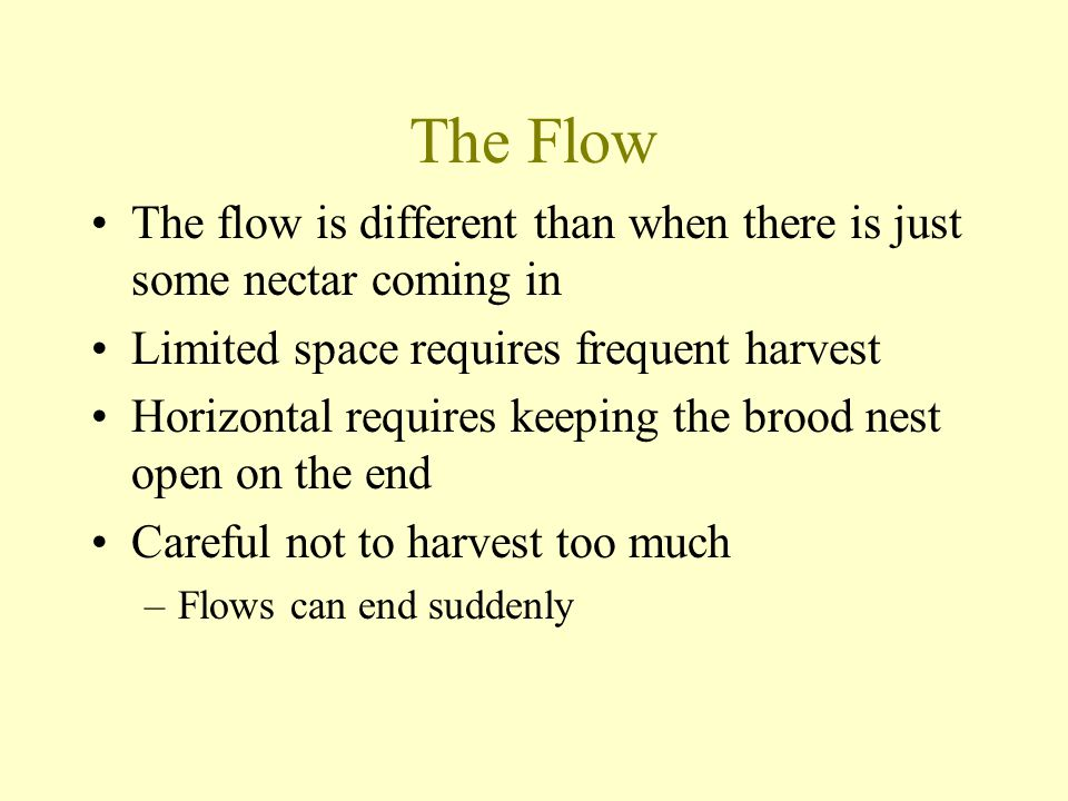 The Flow The flow is different than when there is just some nectar coming in. Limited space requires frequent harvest.