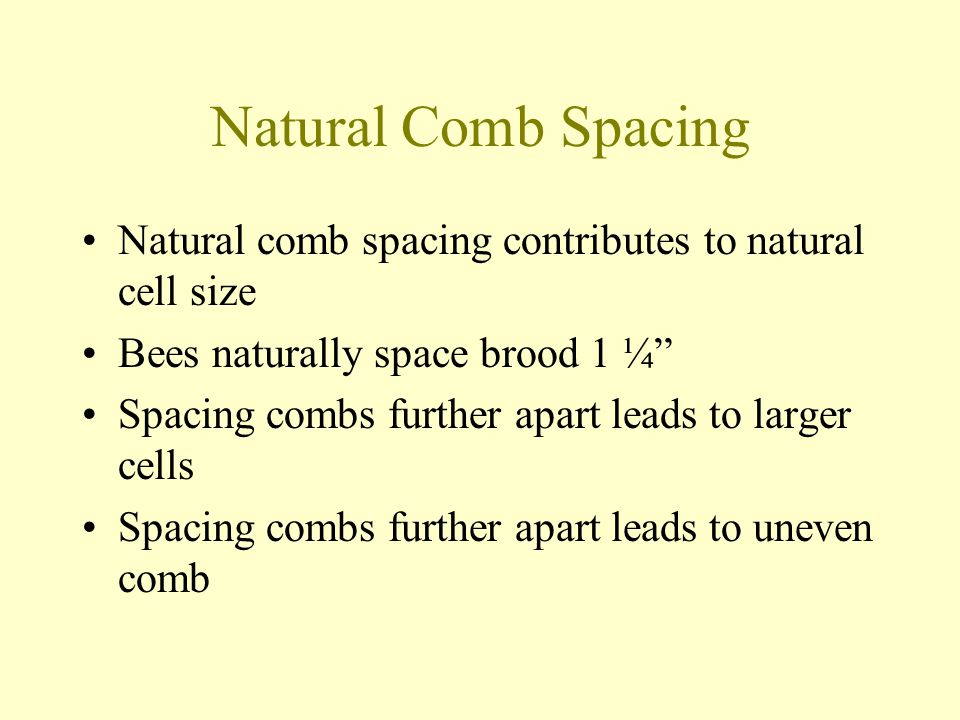 Natural Comb Spacing Natural comb spacing contributes to natural cell size. Bees naturally space brood 1 ¼