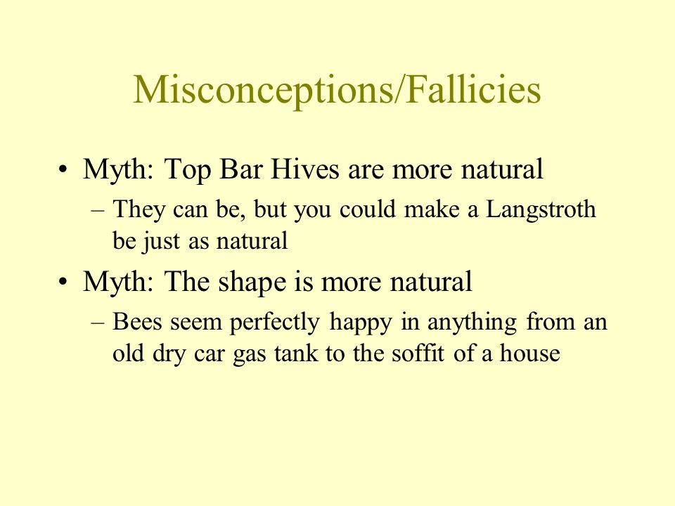 Misconceptions/Fallicies