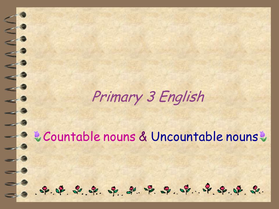 Countable nouns & Uncountable nouns
