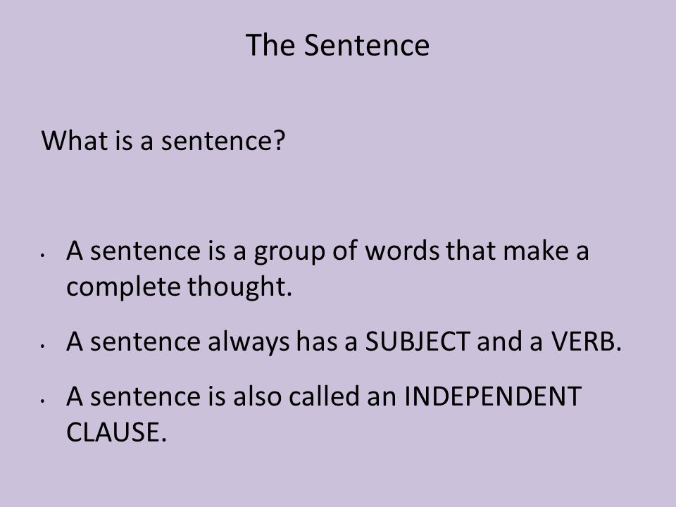 The Sentence What is a sentence