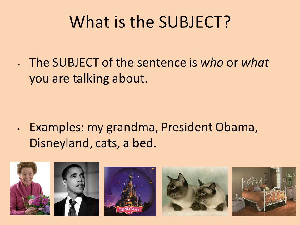 What is the SUBJECT The SUBJECT of the sentence is who or what you are talking about.
