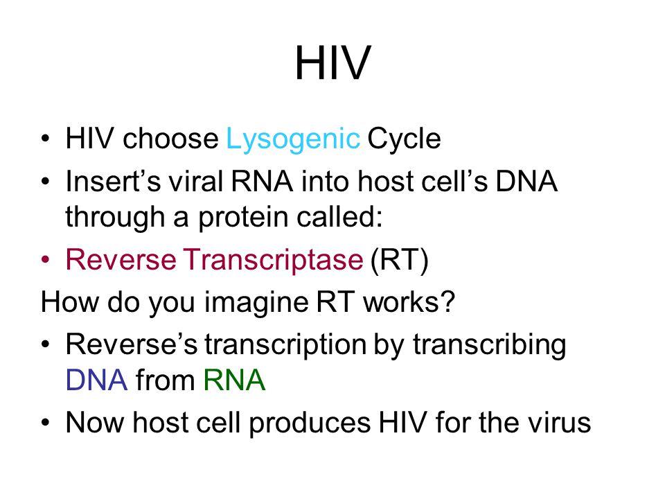 HIV HIV choose Lysogenic Cycle
