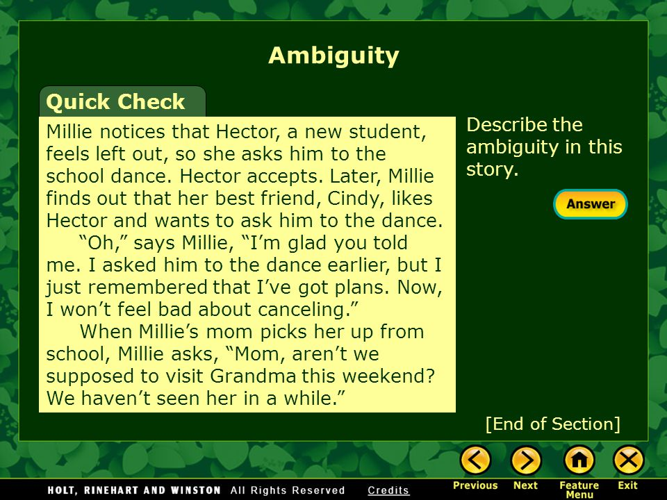 Ambiguity Quick Check Describe the ambiguity in this story.