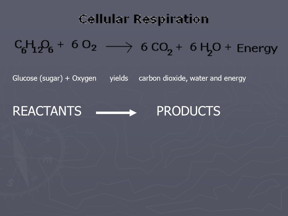 Glucose (sugar) + Oxygen yields carbon dioxide, water and energy