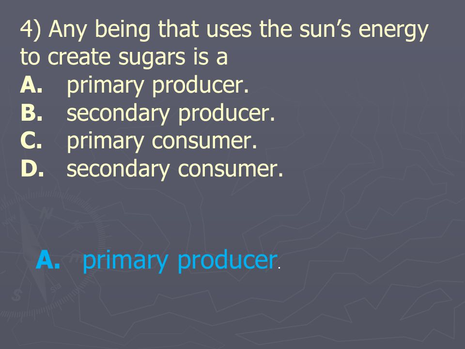 4) Any being that uses the sun's energy to create sugars is a A