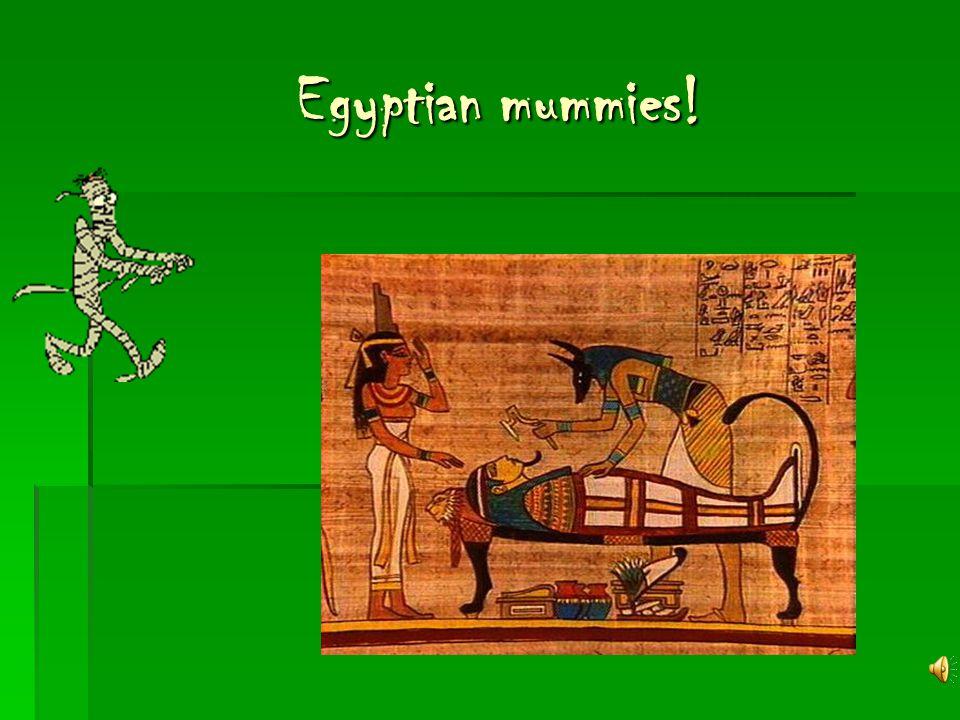 Egyptian mummies!