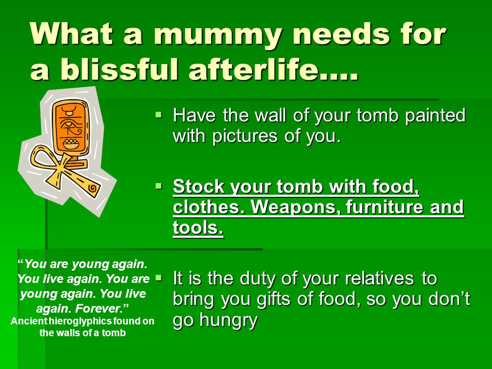 What a mummy needs for a blissful afterlife….