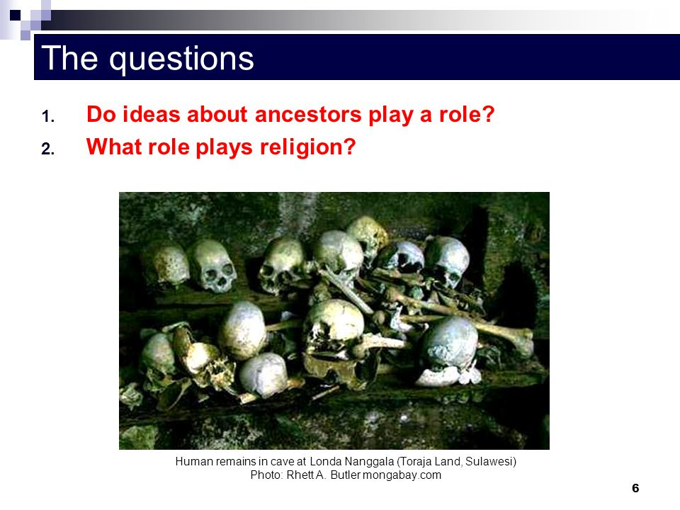 The questions Do ideas about ancestors play a role