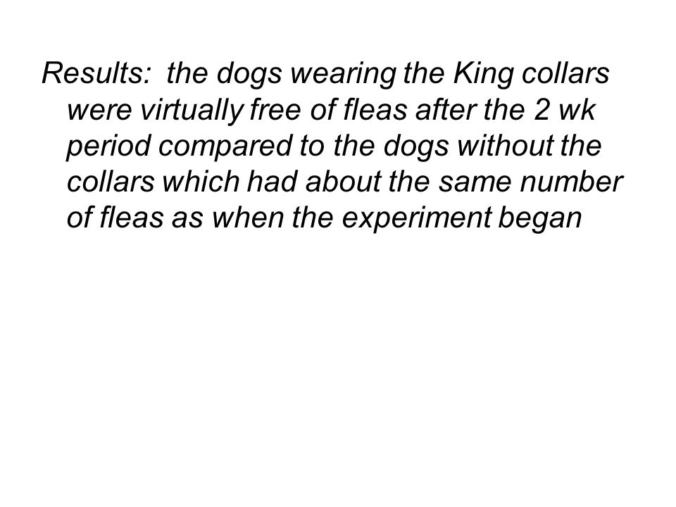 Results: the dogs wearing the King collars were virtually free of fleas after the 2 wk period compared to the dogs without the collars which had about the same number of fleas as when the experiment began