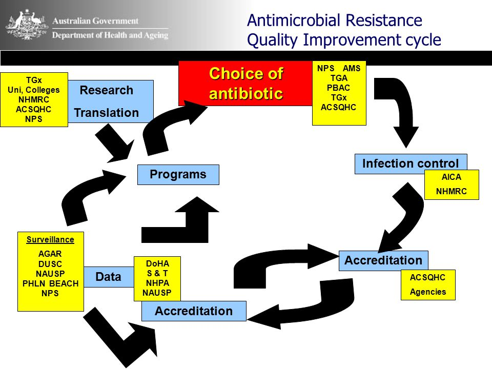 Antimicrobial Resistance Quality Improvement cycle